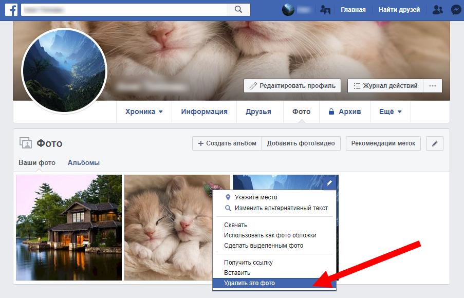 ветреный денек, как поставить свою фотографию на фейсбук белым покрывалом поля